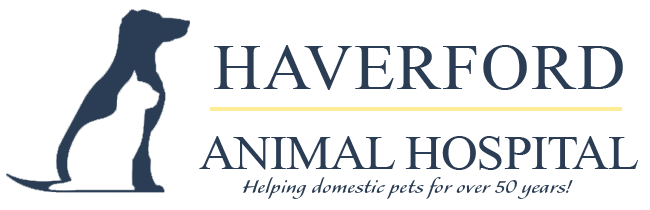 Logo for Veterinarians Haverford | Haverford Animal Hospital
